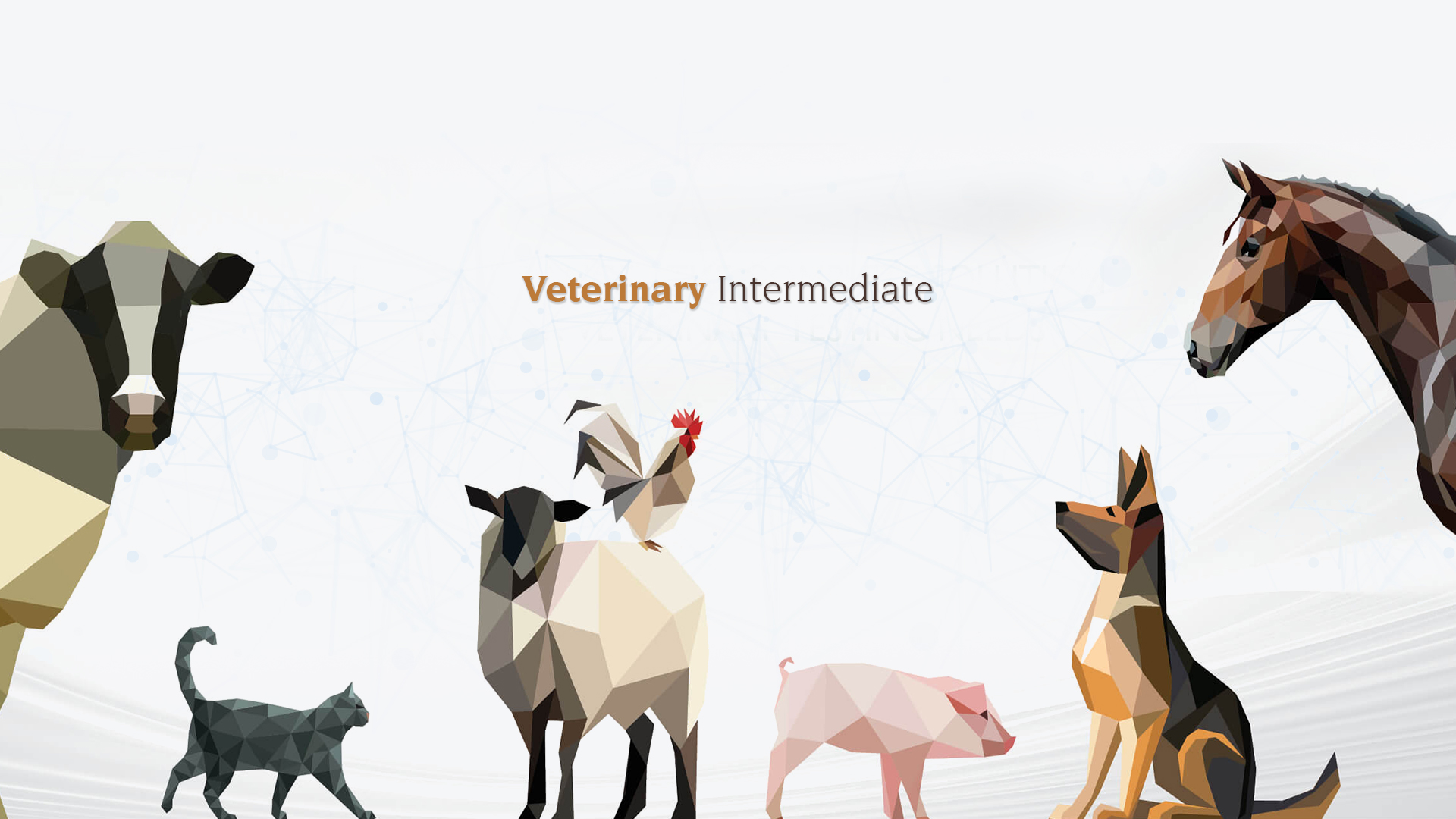 Veterinary-intermediate-Manufacturer
